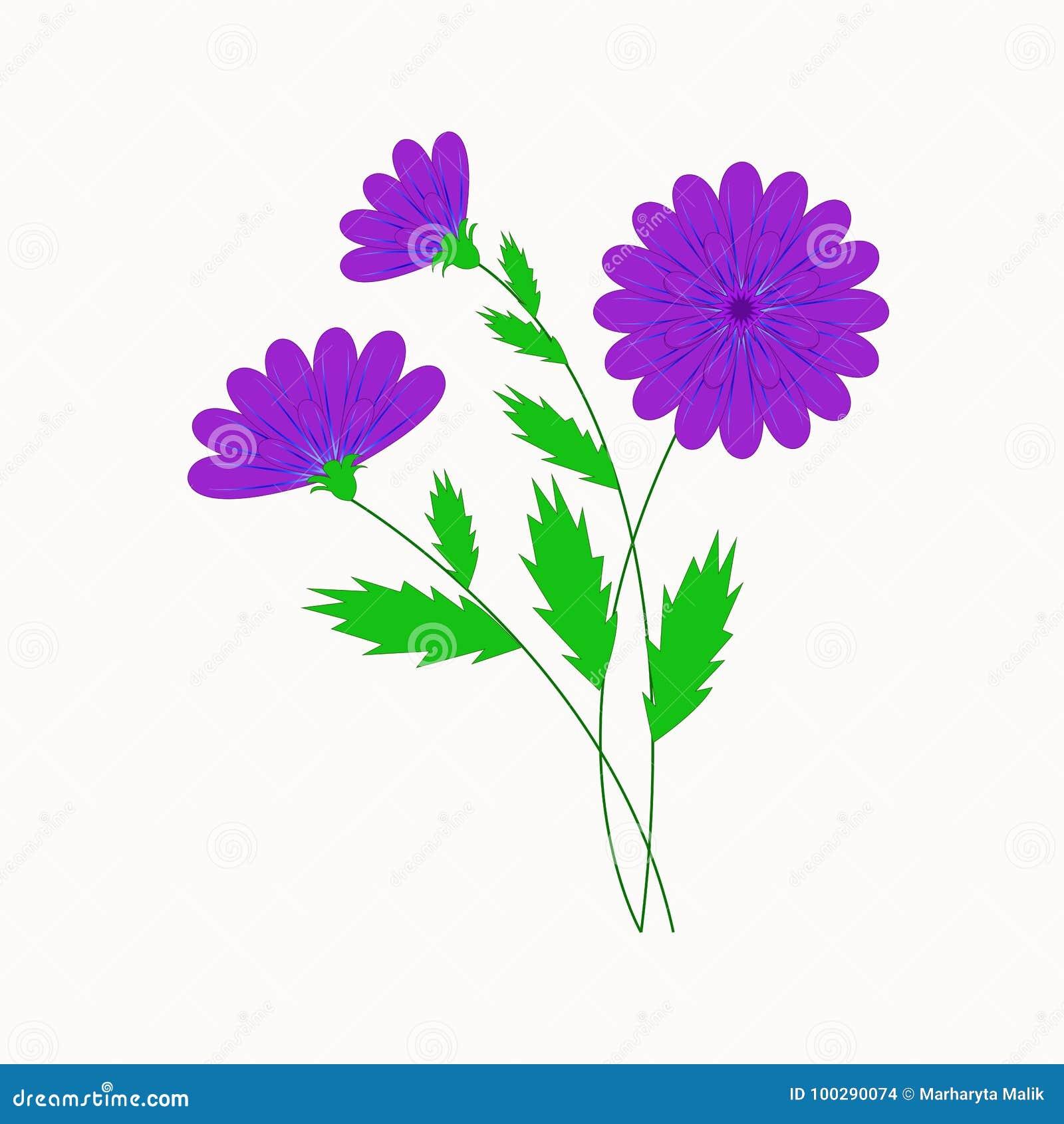 Vectorillustratie, mooie purpere bloemen