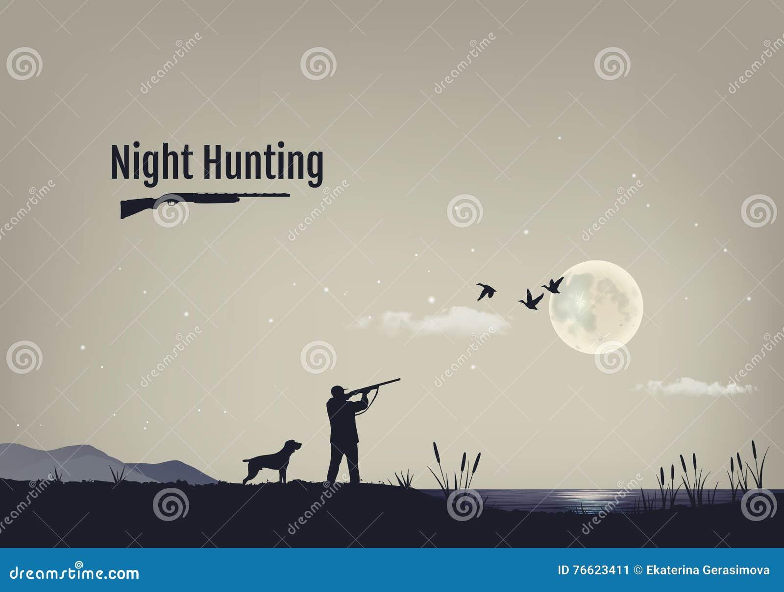 Vectorillustratie van het proces om voor eenden in de nacht te jagen Silhouetten van een jachthond met de jager