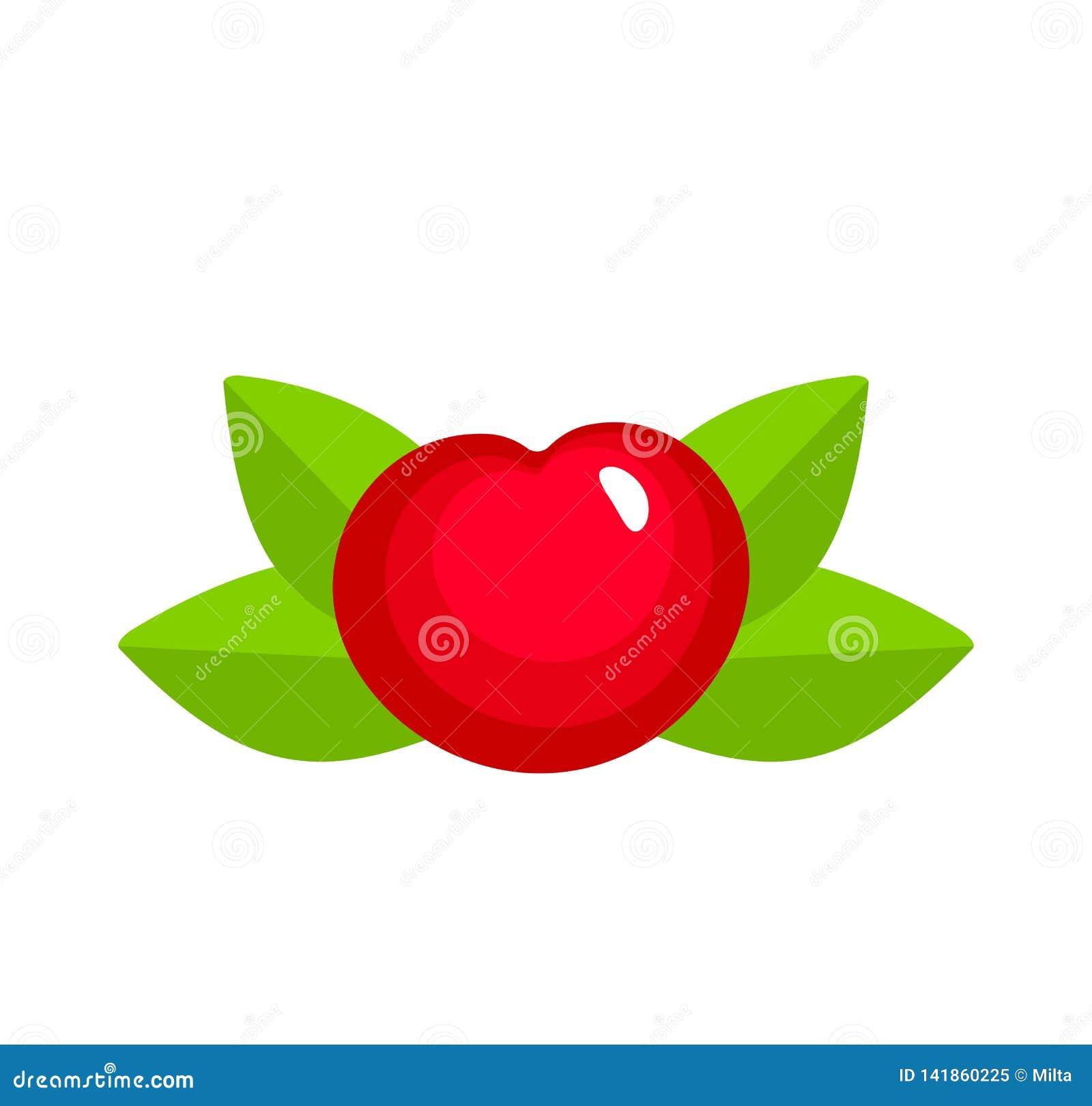 Vectorillustratie van rode rijpe kers met bladeren Vlakke pictogramreeks van organische verse bes Natuurlijk vegetarisch voedsel