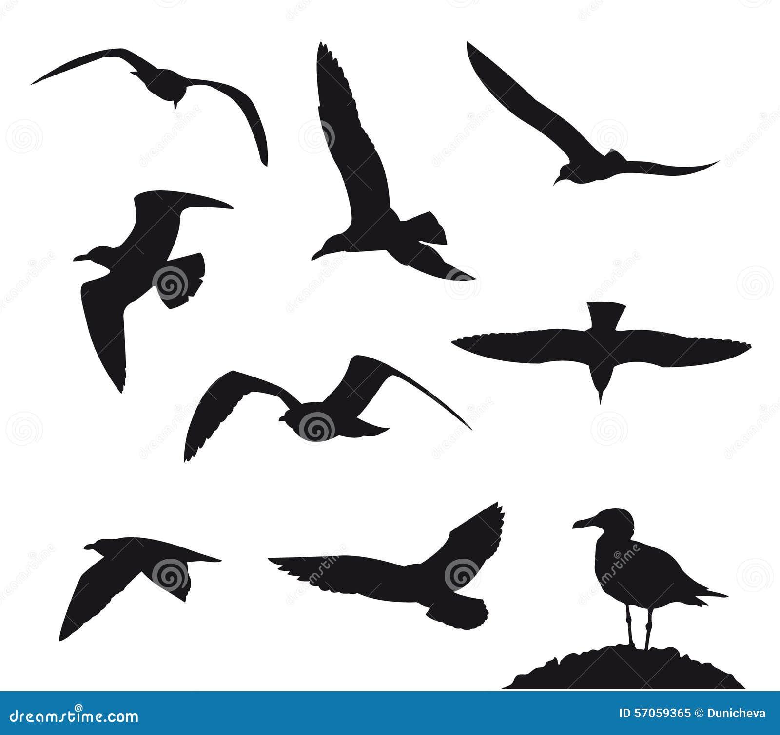Vectorillustratie van verscheidenheids de vliegende zeemeeuwen