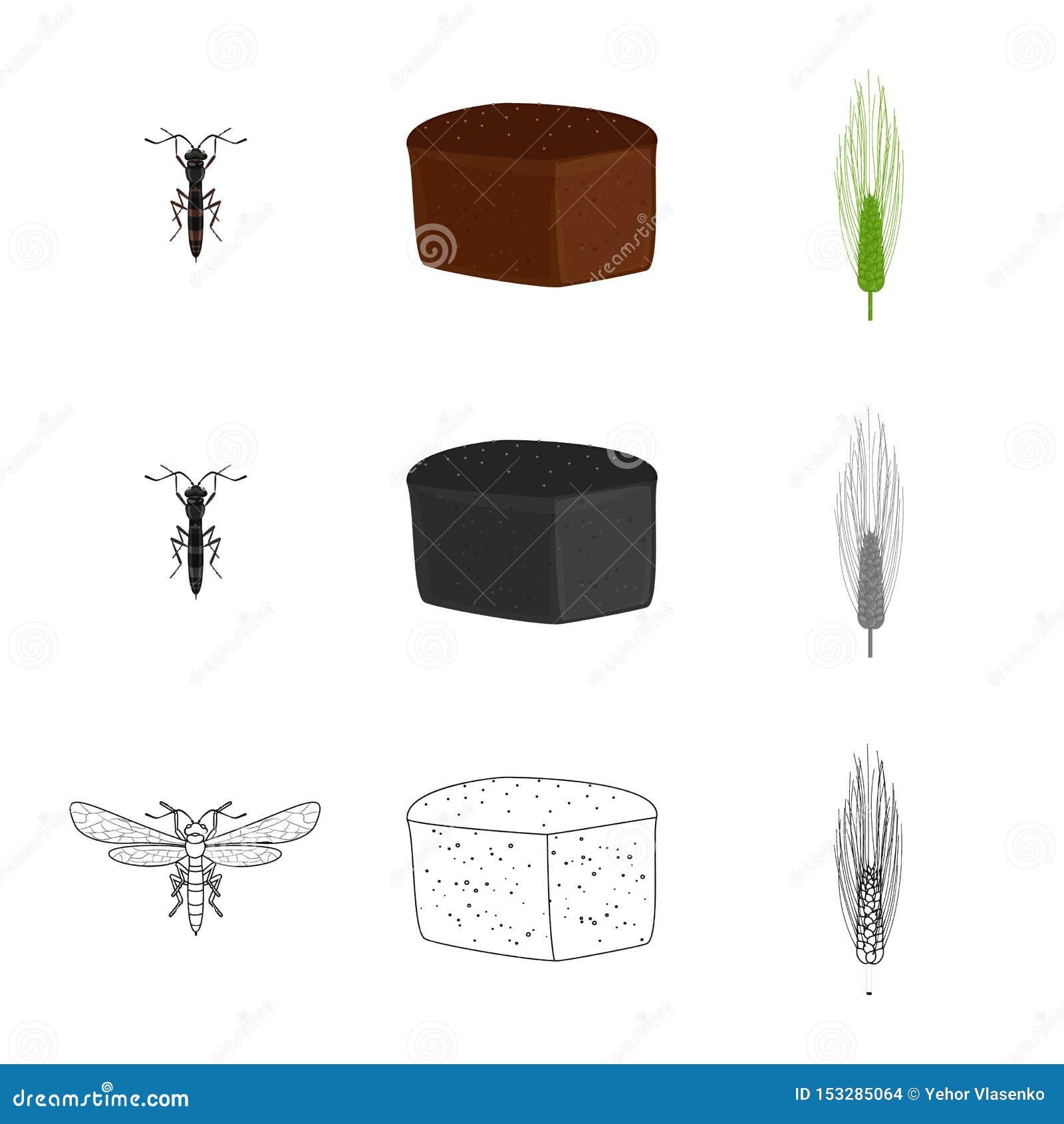 Vectorontwerp van landbouw en de landbouwsymbool Reeks van landbouw en het symbool van de installatievoorraad voor Web