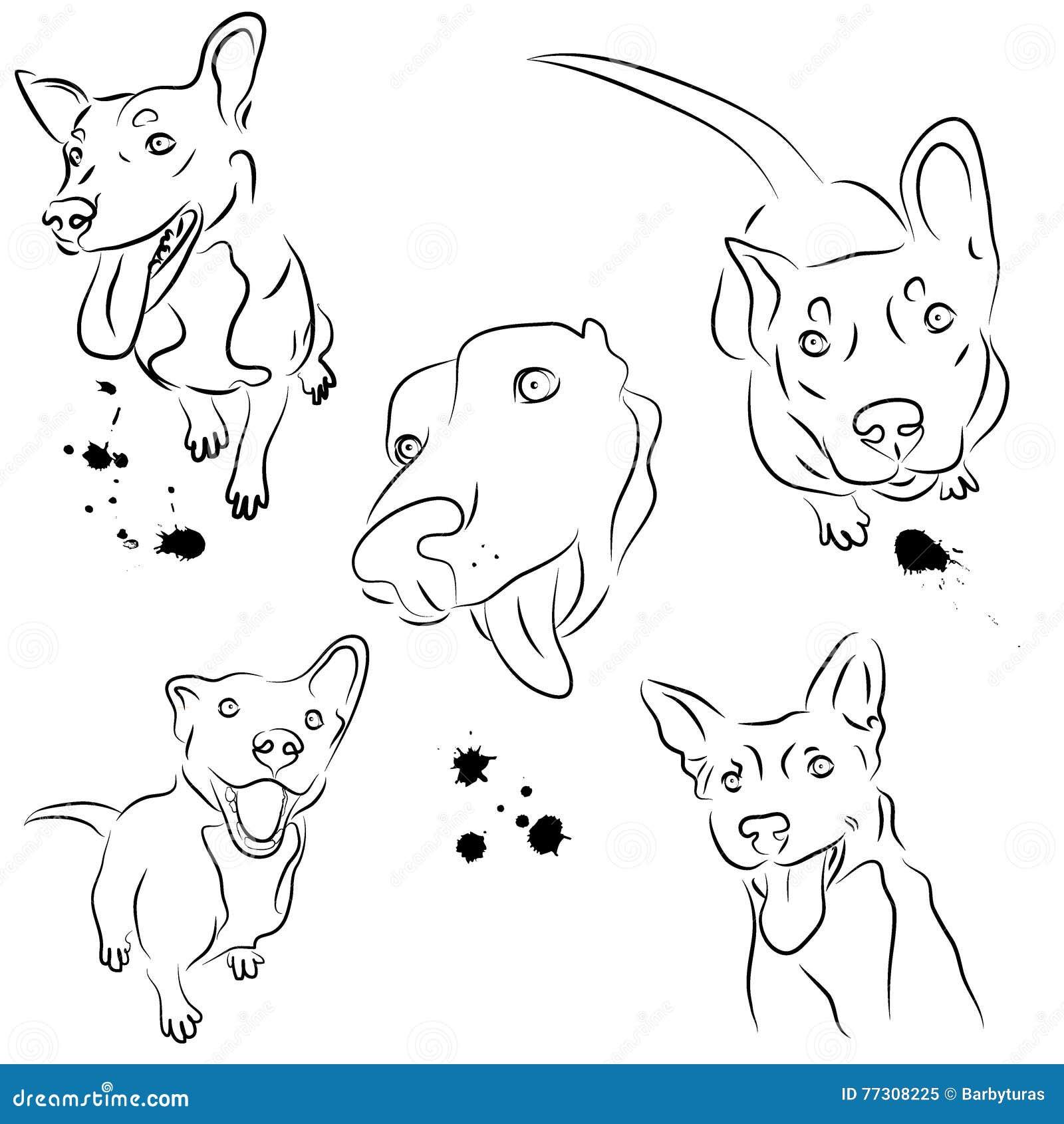Vectorreeks van het glimlachen van honden