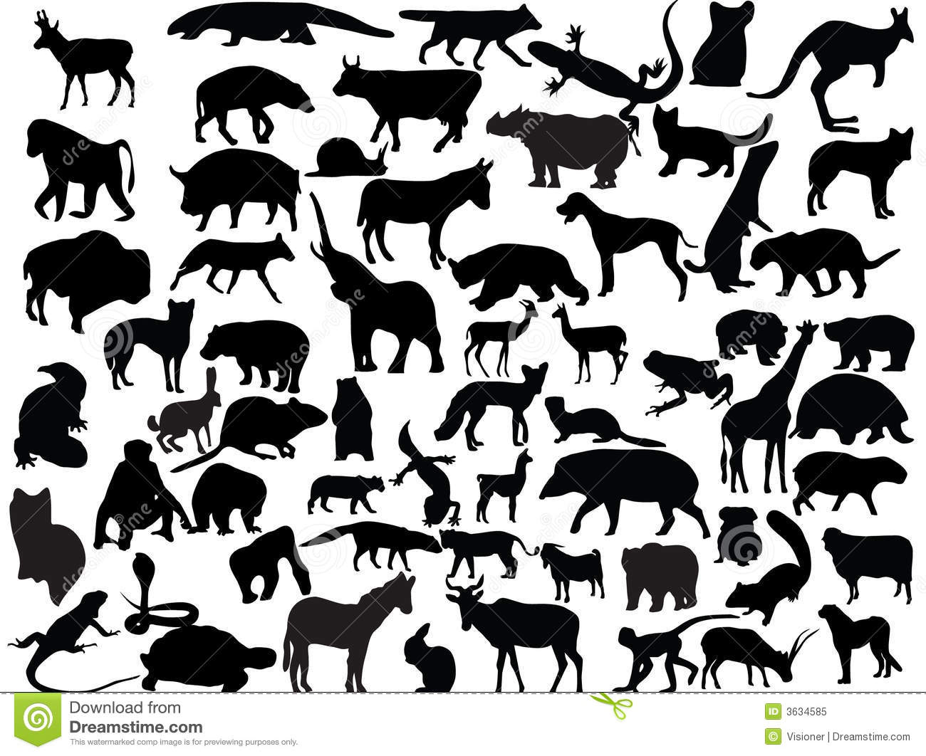 Vectors of animals