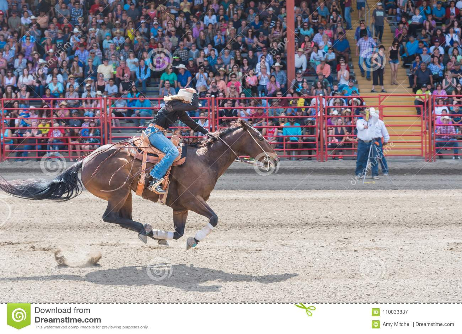 Veedrijfster en paardenkoers om lijn bij vat het rennen de concurrentie te beëindigen