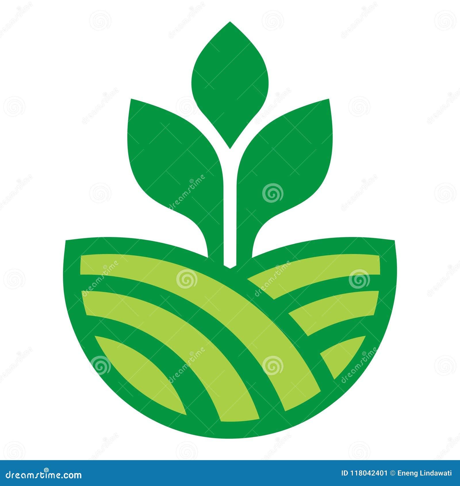 Vegetable Agriculture Farm Green Design Vector Stock