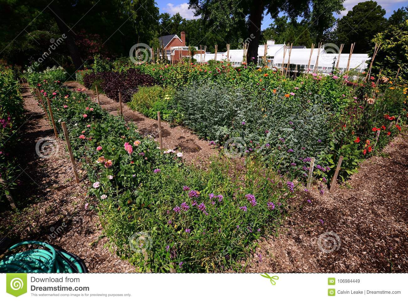 Vegetable and flower garden behind a home stock image image of vegetable and flower garden behind a home izmirmasajfo