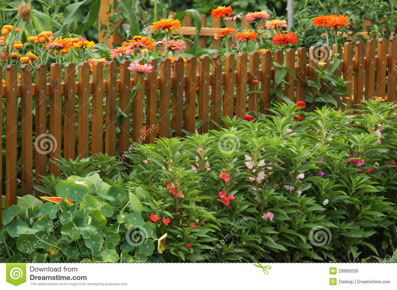 Vegetable garden with flowers border royalty free stock image image 28890036 Flowers to plant in vegetable garden