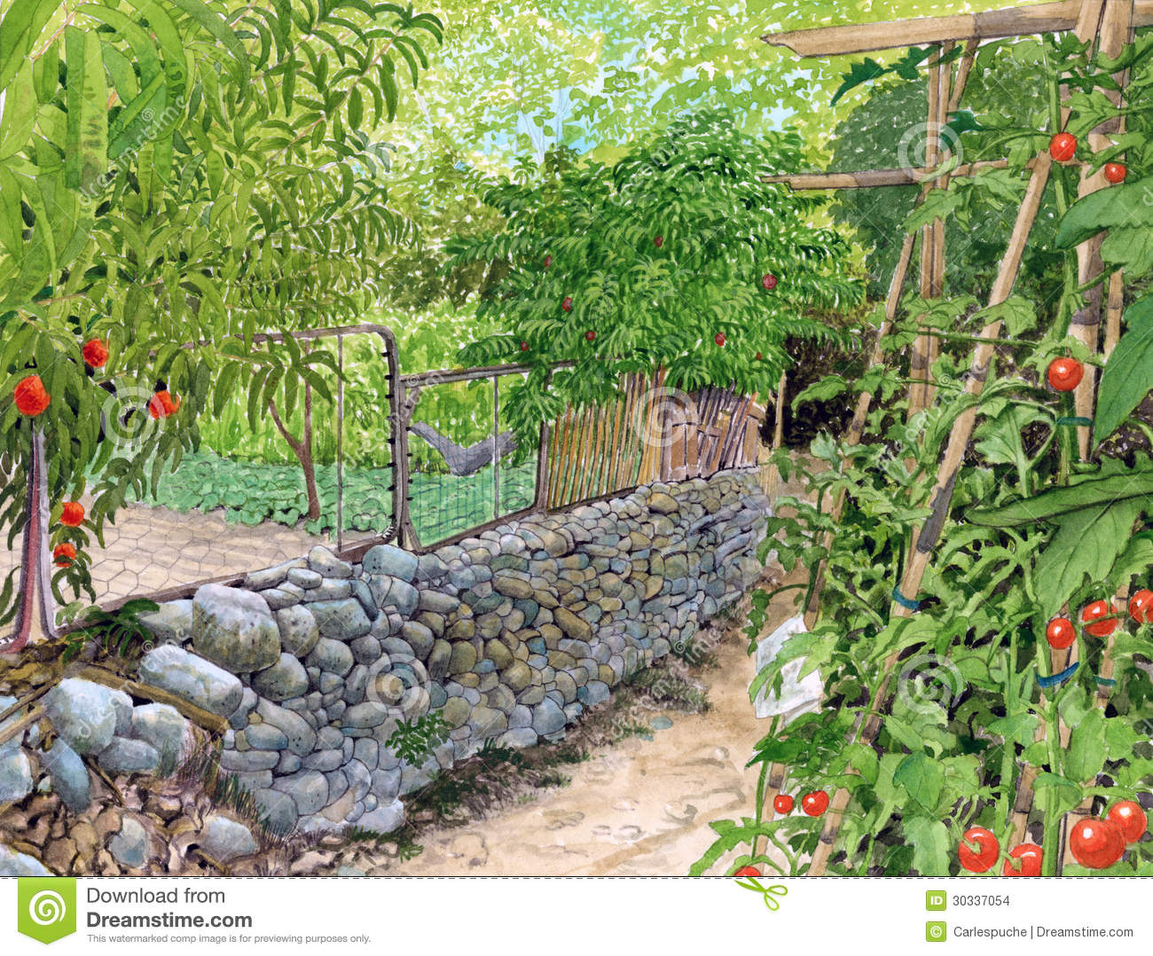Vegetable garden art - Garden Watercolor