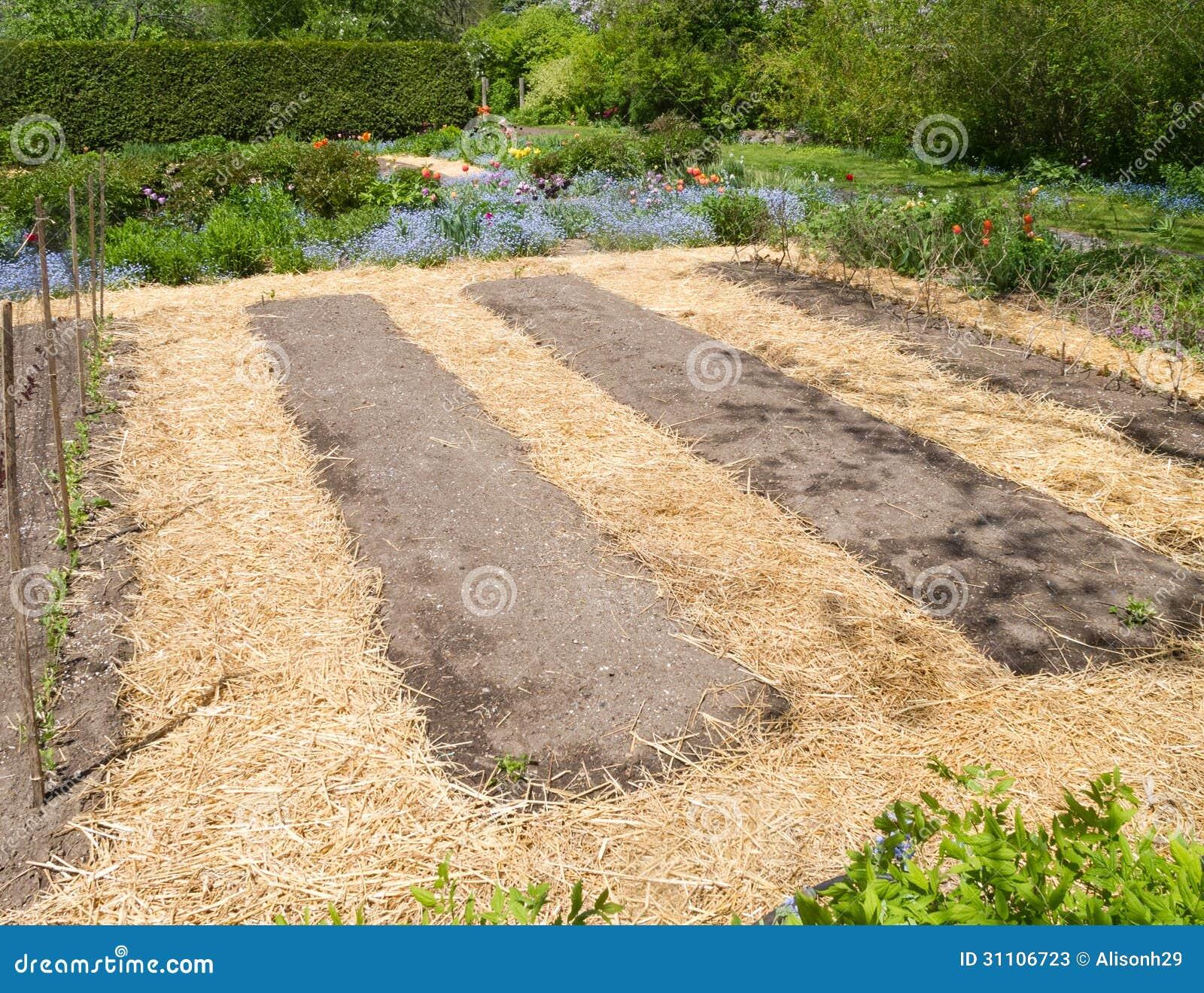 how to put mulch in garden