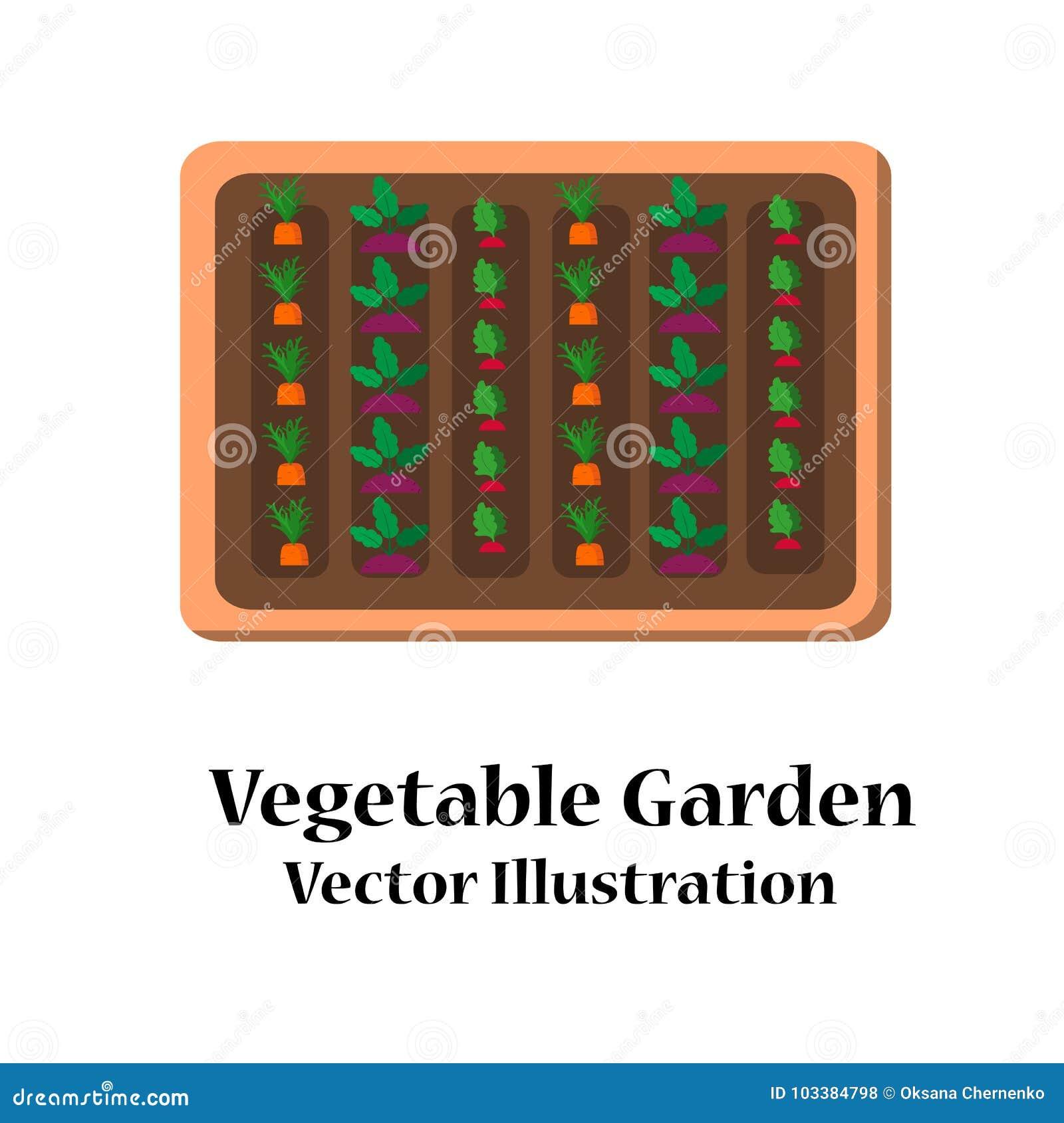 Vegetable Garden Planner Flat Design Stock Vector Illustration