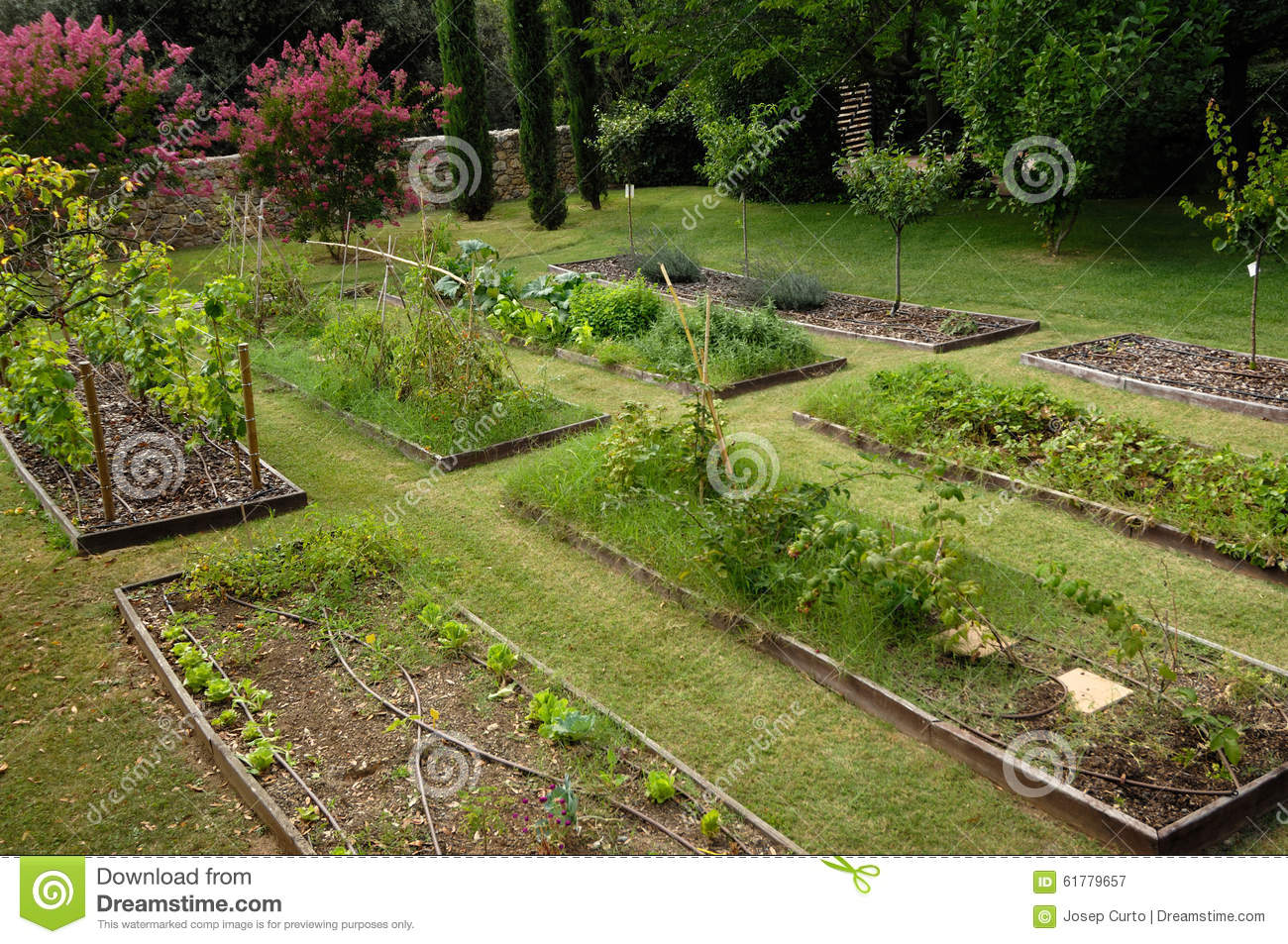Vegetable garden vegetable garden in the countryside stock photo image 61779657 - Countryside dream gardens ...
