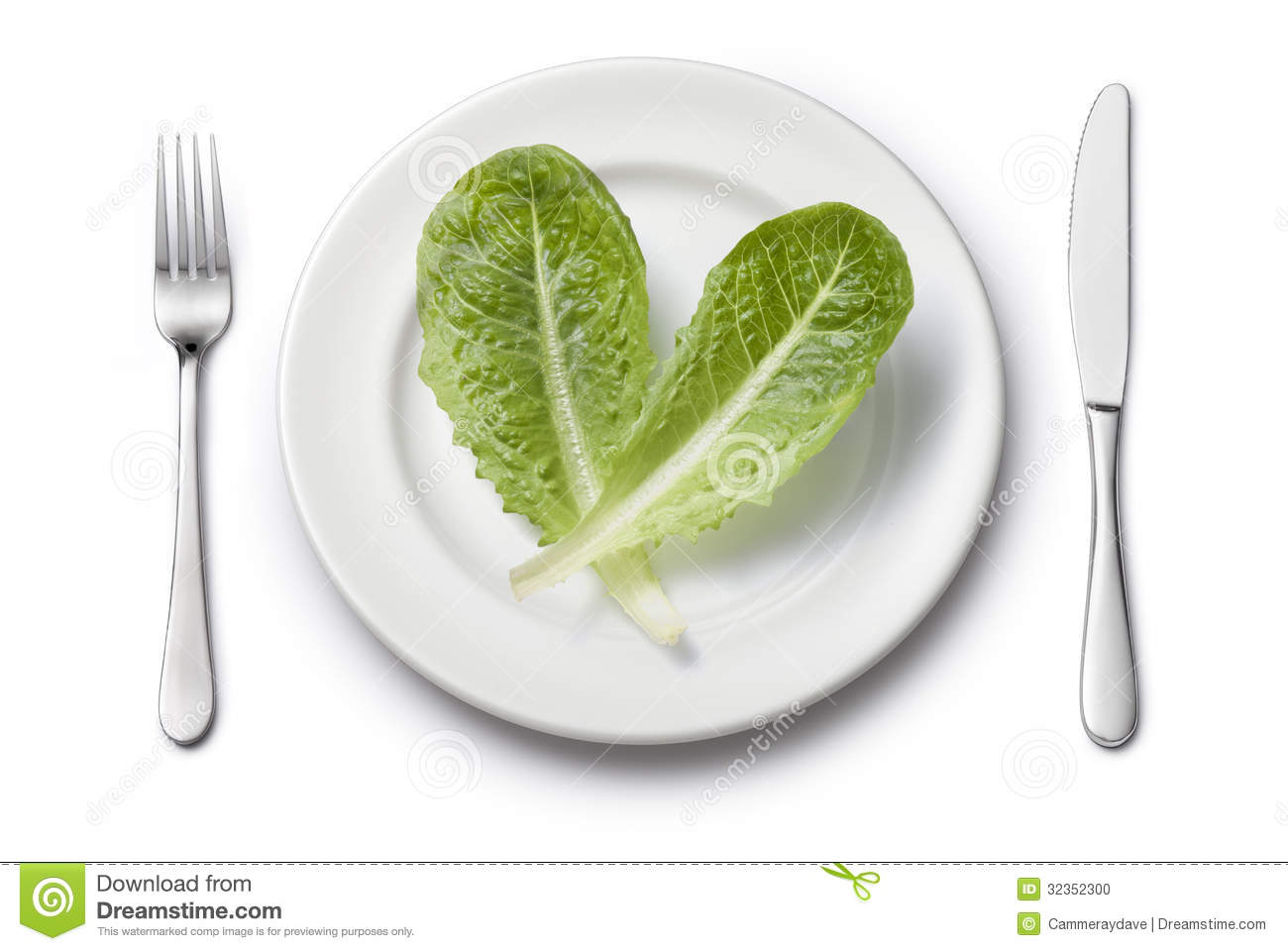 Vegetables Plate Setting Diet Stock Photo Image 32352300