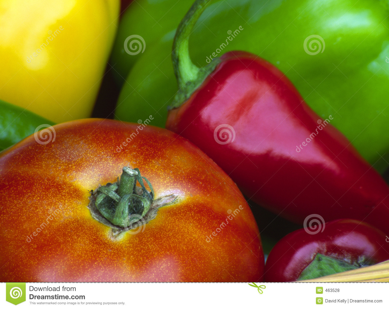 Download Vegetables stock photo. Image of tangy, grown, tomato, vegetable - 463528