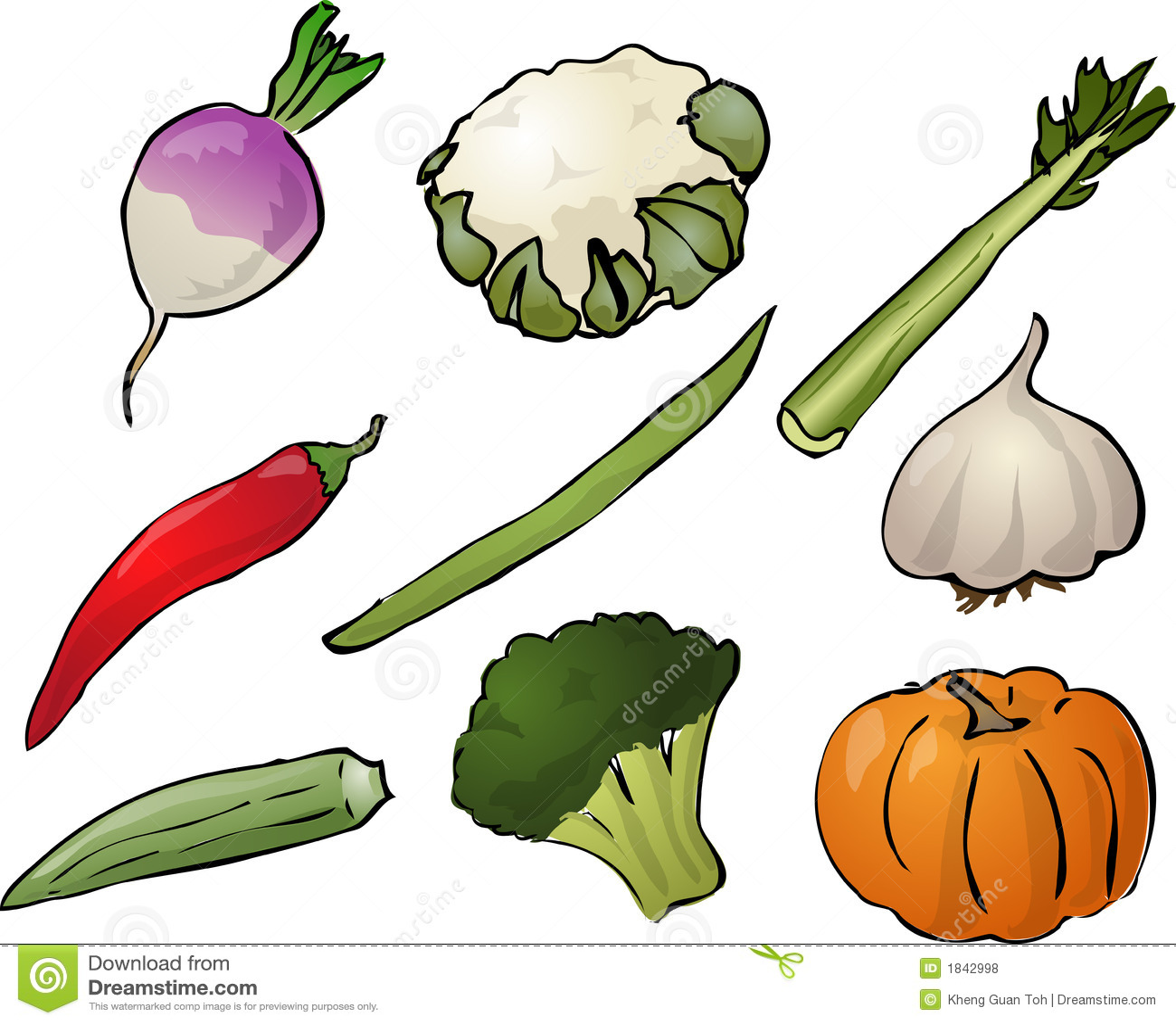 Illustration of vegetables, hand-drawn look: turnip, cauliflower ...
