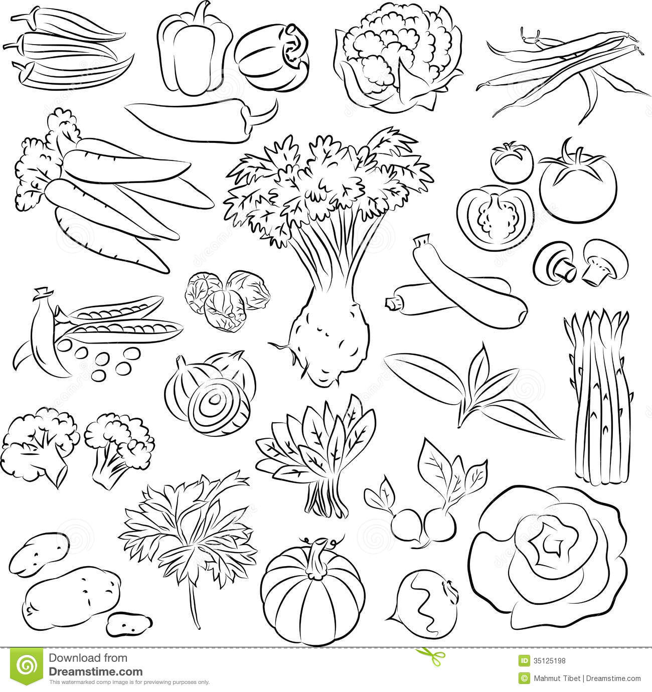 Line Art Vegetables : Vegetables set royalty free stock photos image