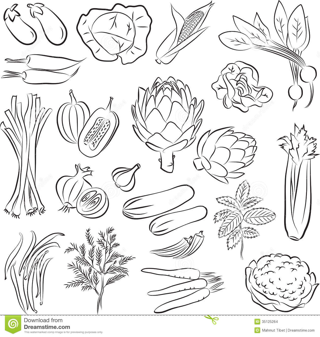 Line Art Vegetables : Vegetables set stock vector image of environmental