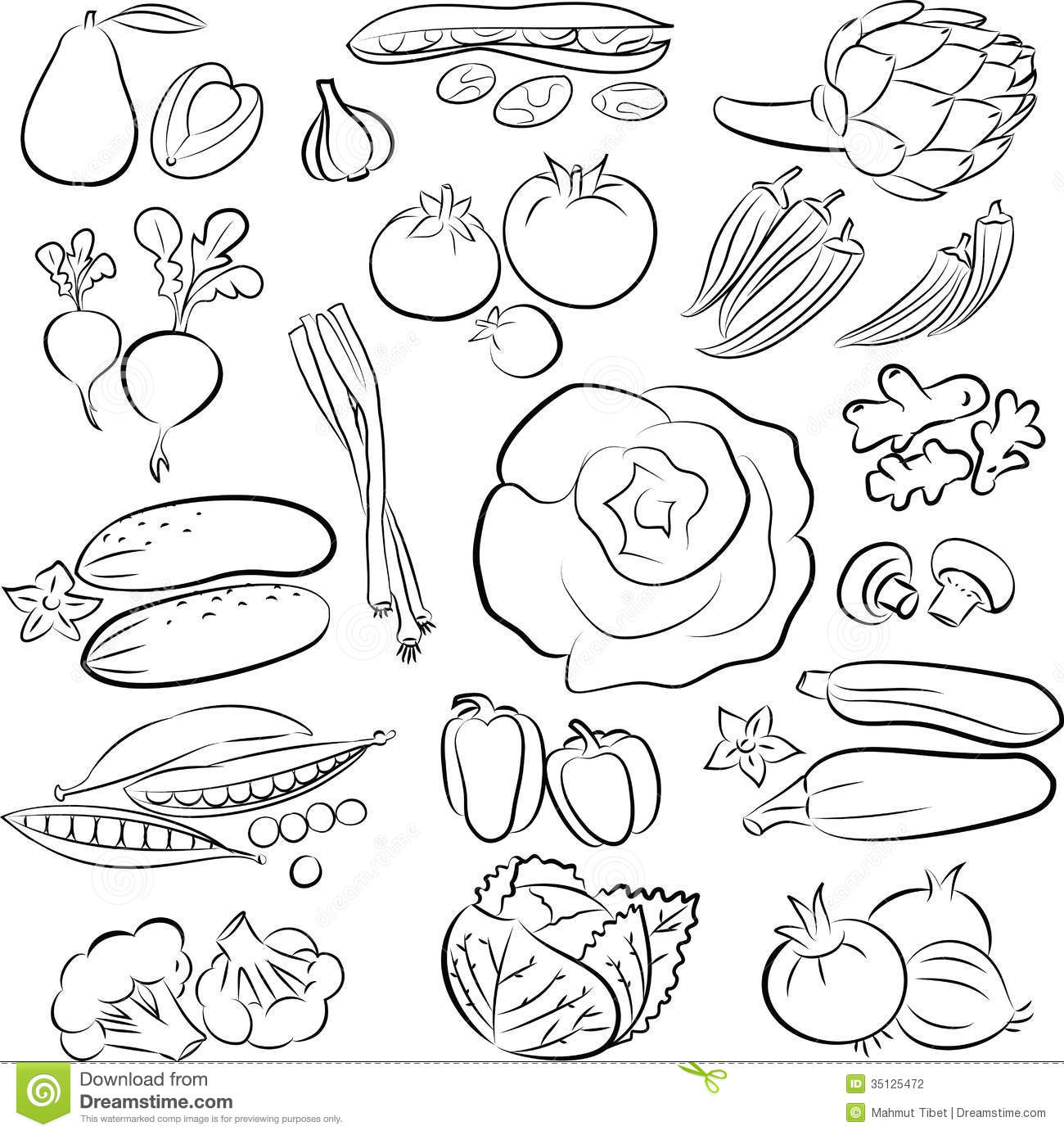 Line Art Vegetables : Vegetables set stock photography image