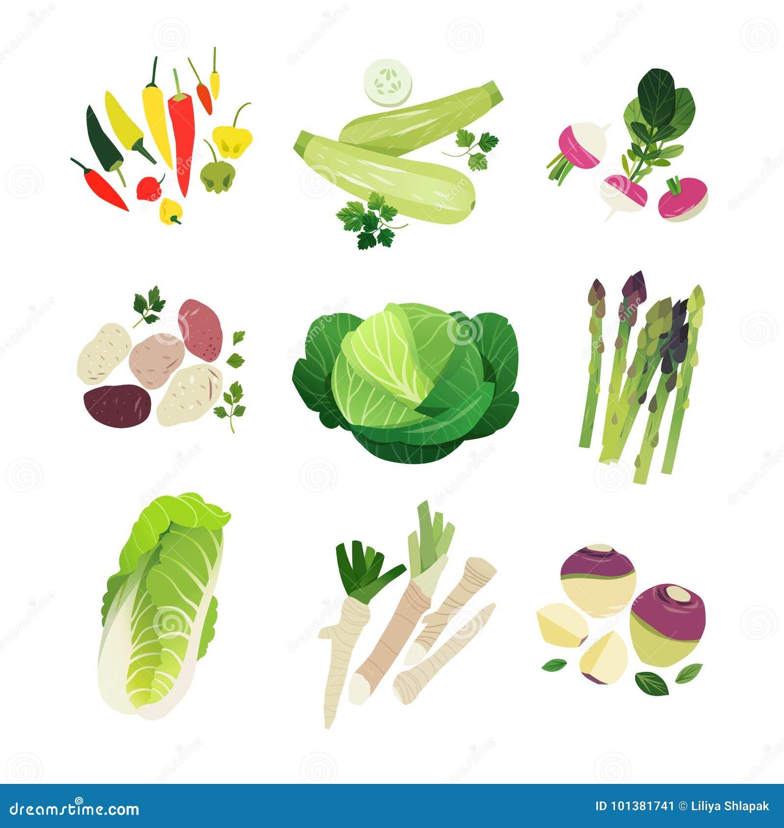Vegetais do clipart ajustados