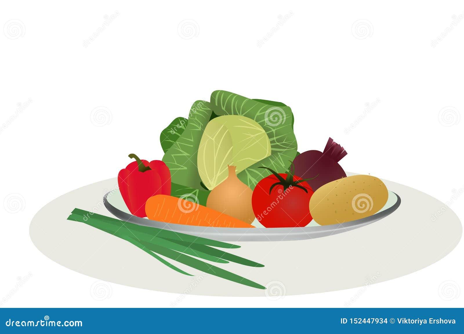 Vegetais para cozinhar a sopa, um grupo de vegetais, ilustração do vetor