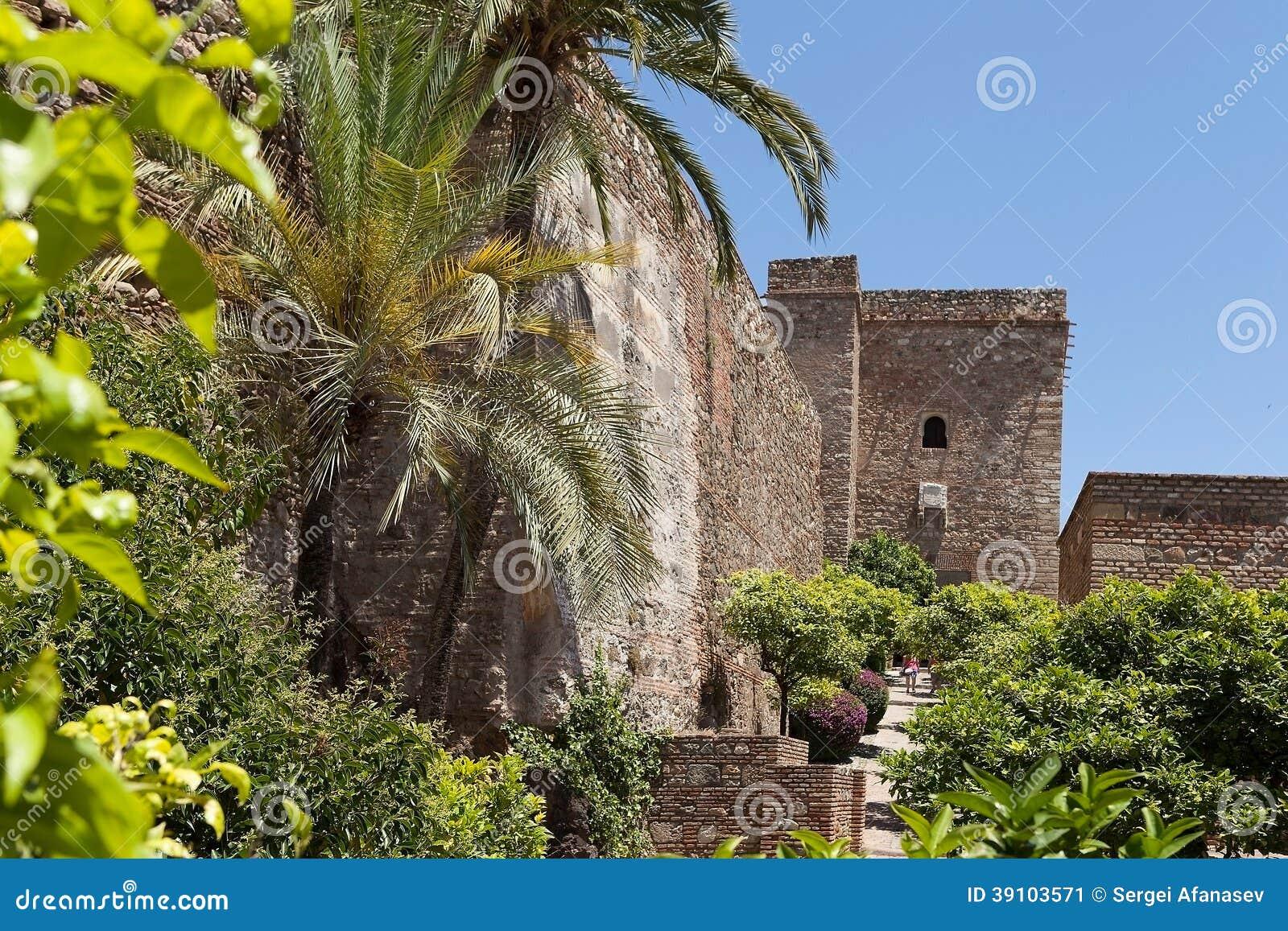 Vegetatie dichtbij Zamka.Granada.