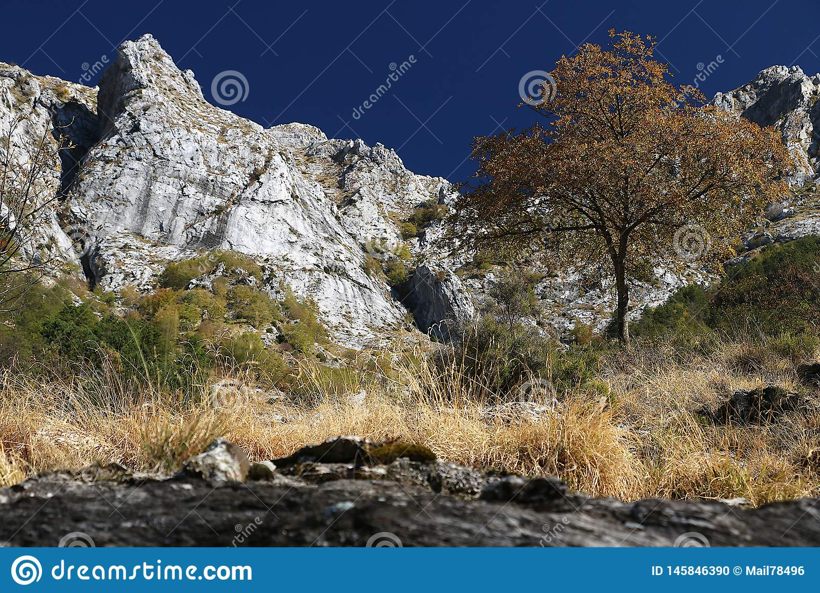 Alpi Apuane, Massa Carrara, Tuscany, Italy. Landscape with mount