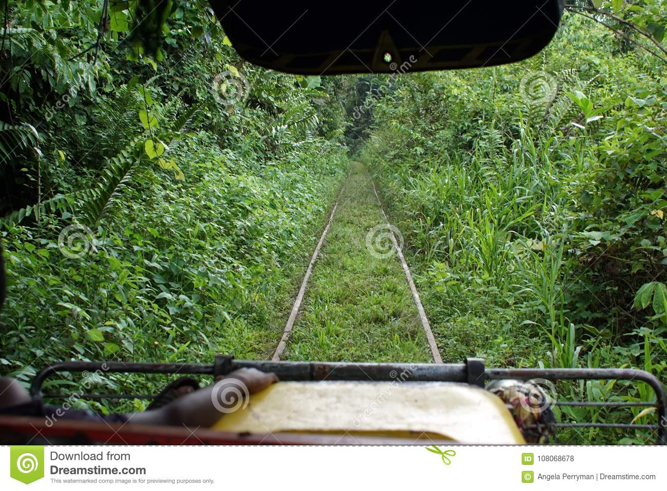 Vehicle Running On Abandoned Train Tracks In The Jungle
