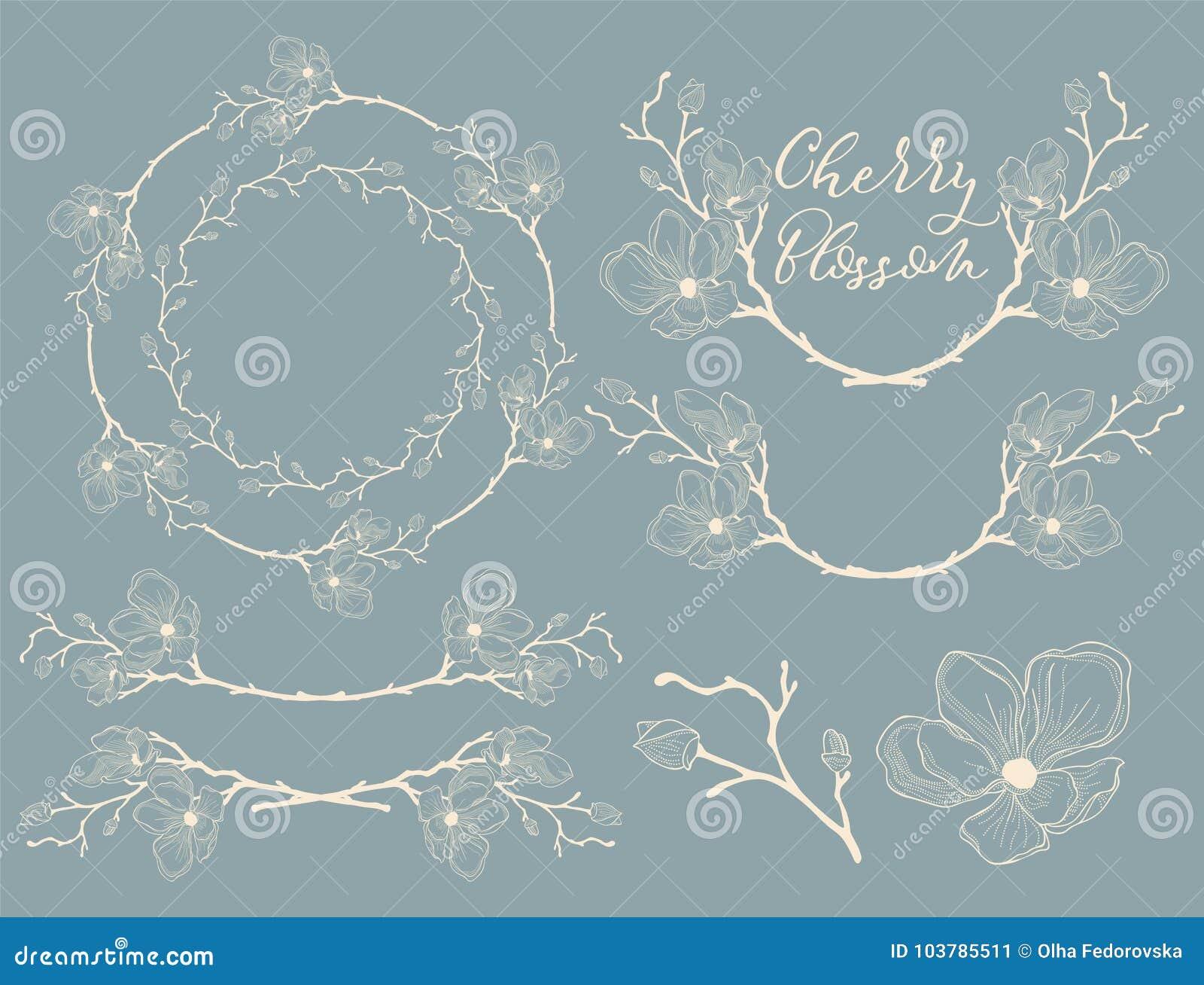 Vektor Cherry Blossom Design Avdelare, ramar och kransar
