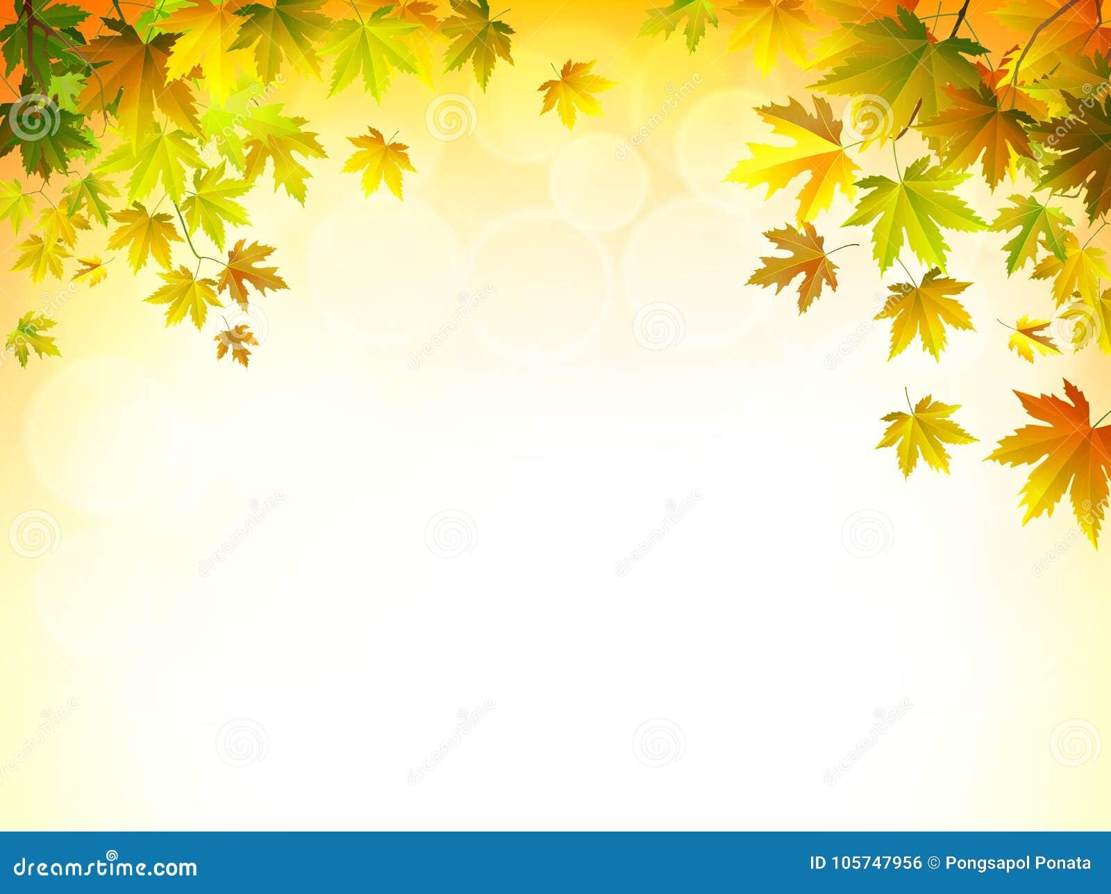 Vektor för ljusa leaves för höstbakgrund solig