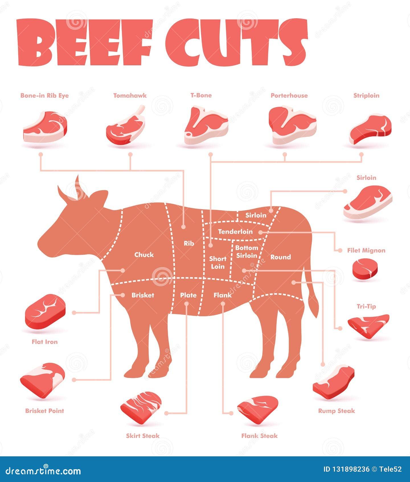 Vektor-Rindfleisch schneidet Diagramm
