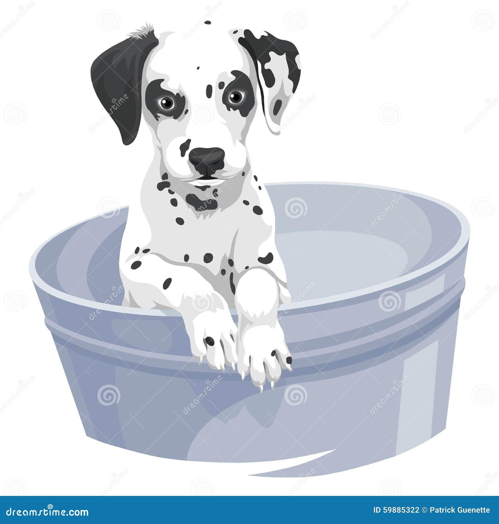 Vektor Von Dalmation Hund In Der Badewanne Vektor Abbildung