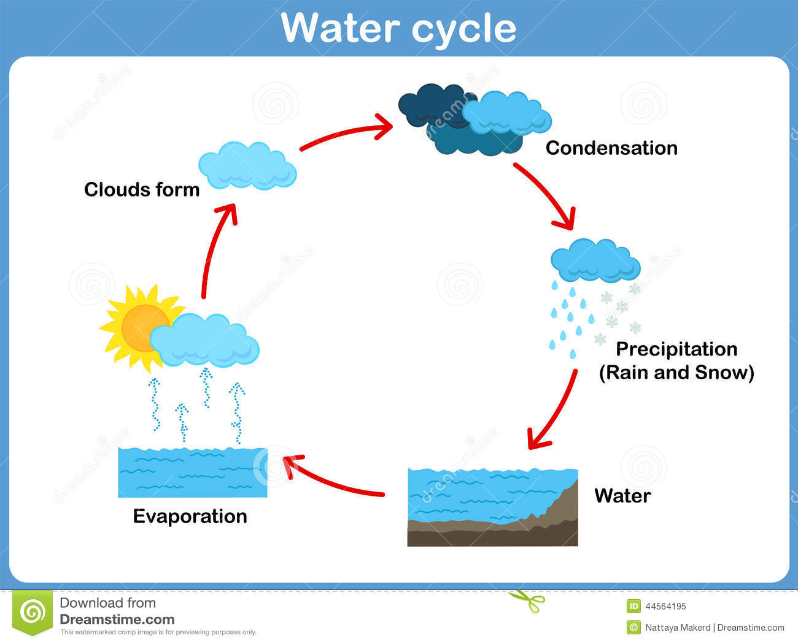 Vektor-Zyklus des Wassers für Kinder