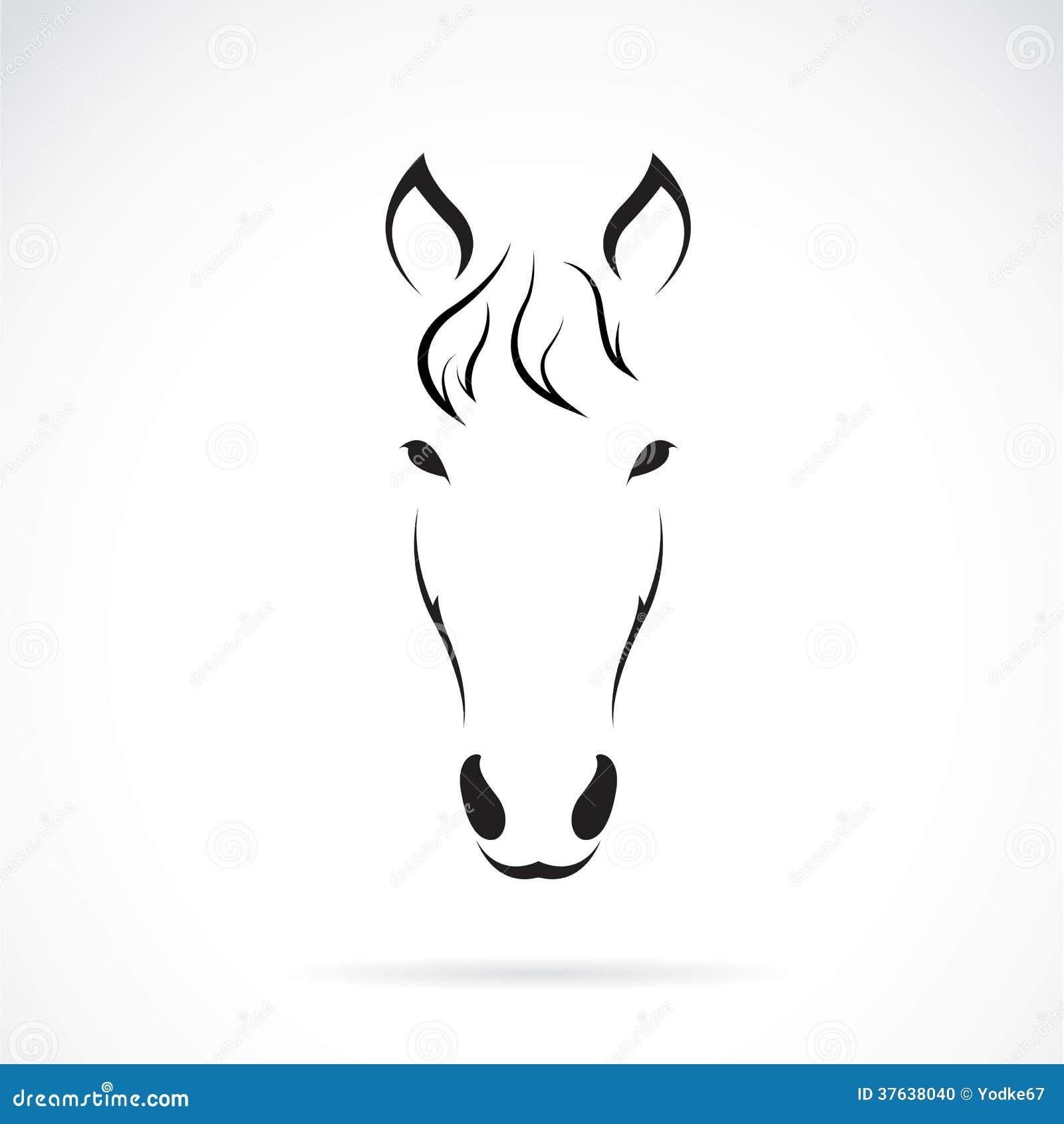 Vektorbild av en hästframsida