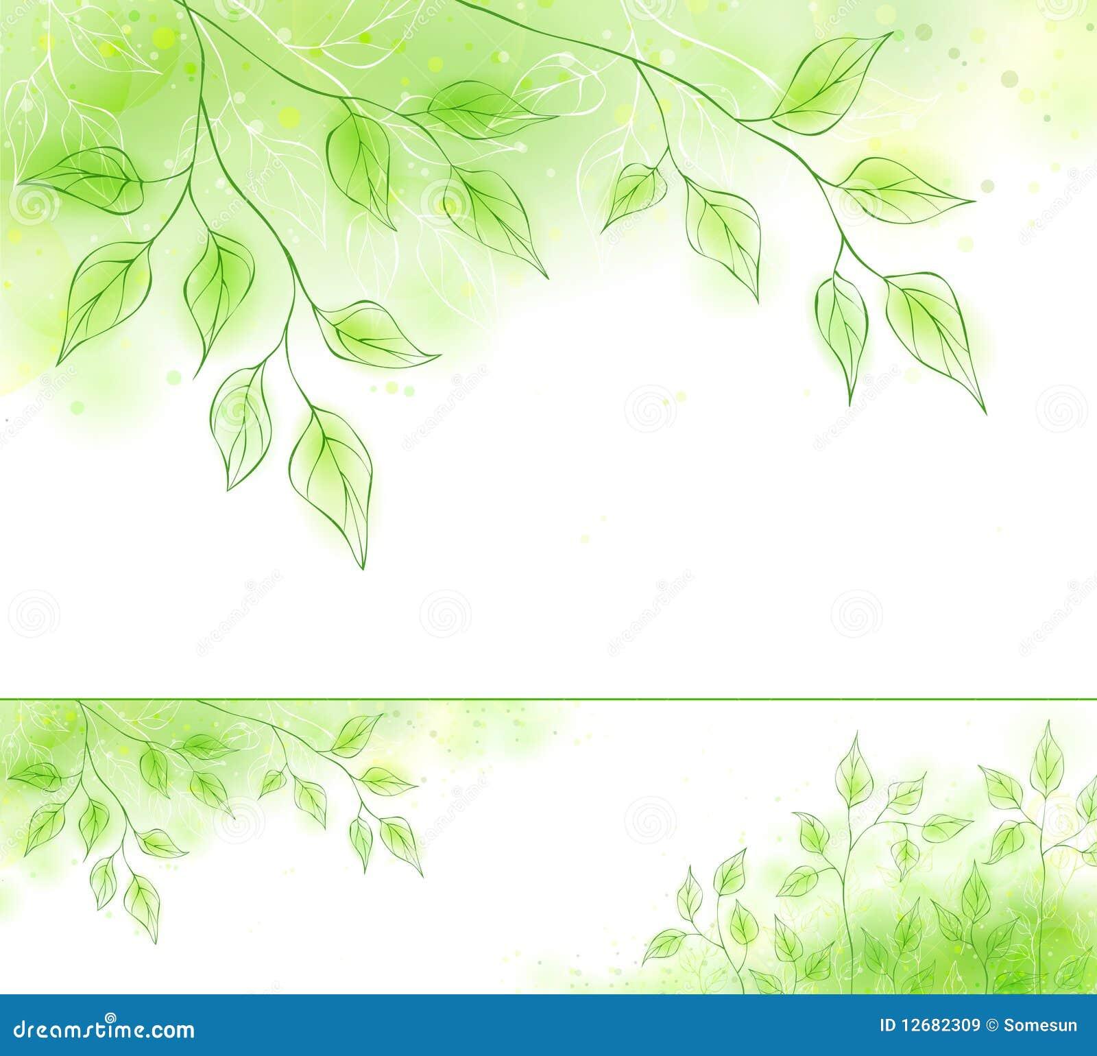 Vektorfrühlingsfahne mit grünem Laub