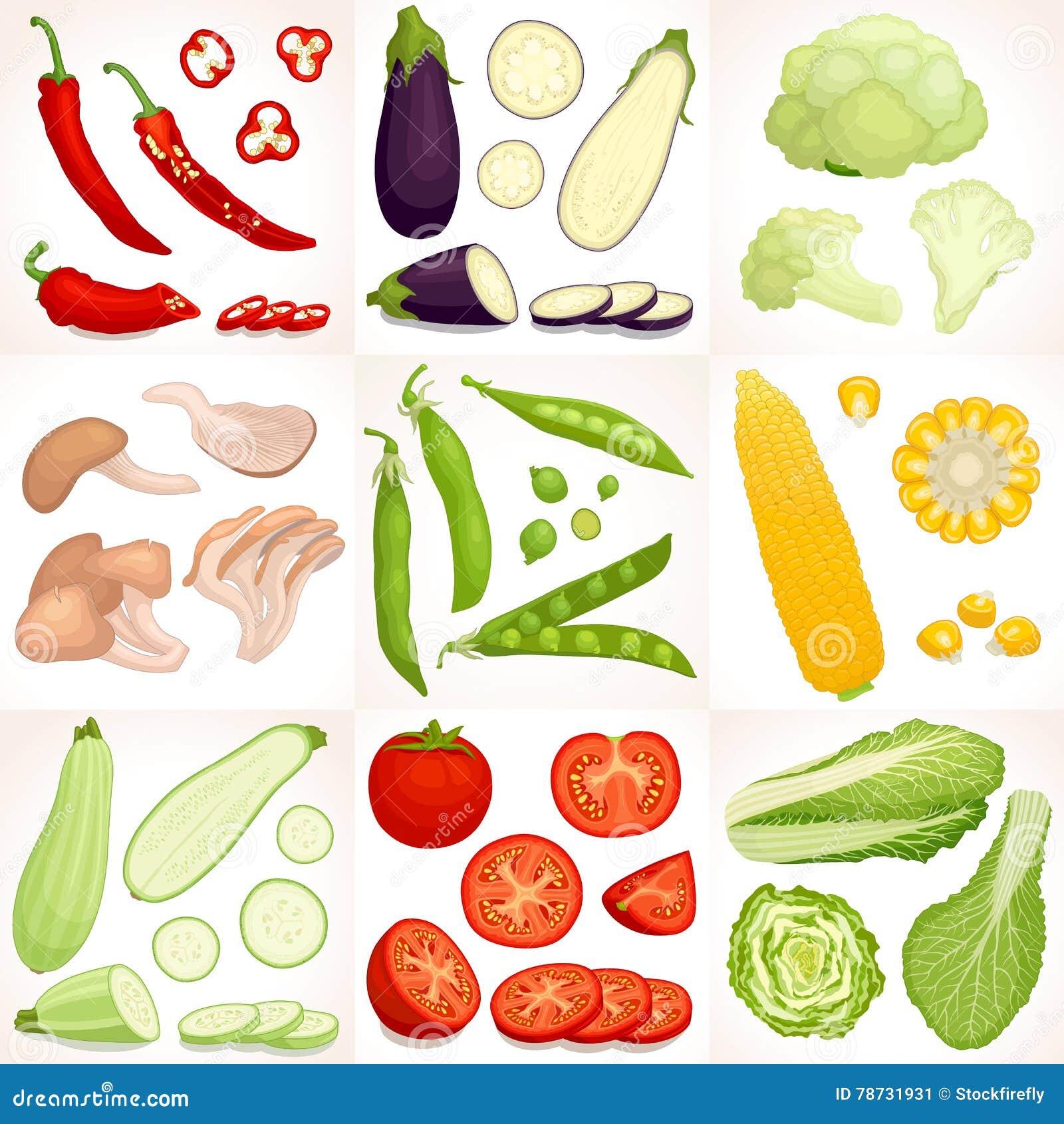 Vektorgrönsakuppsättning