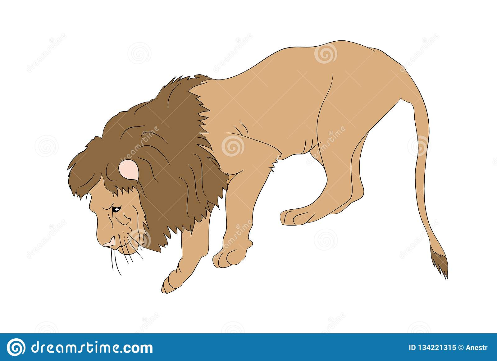 Vektorillustration av ett lejon, som står, vektor,