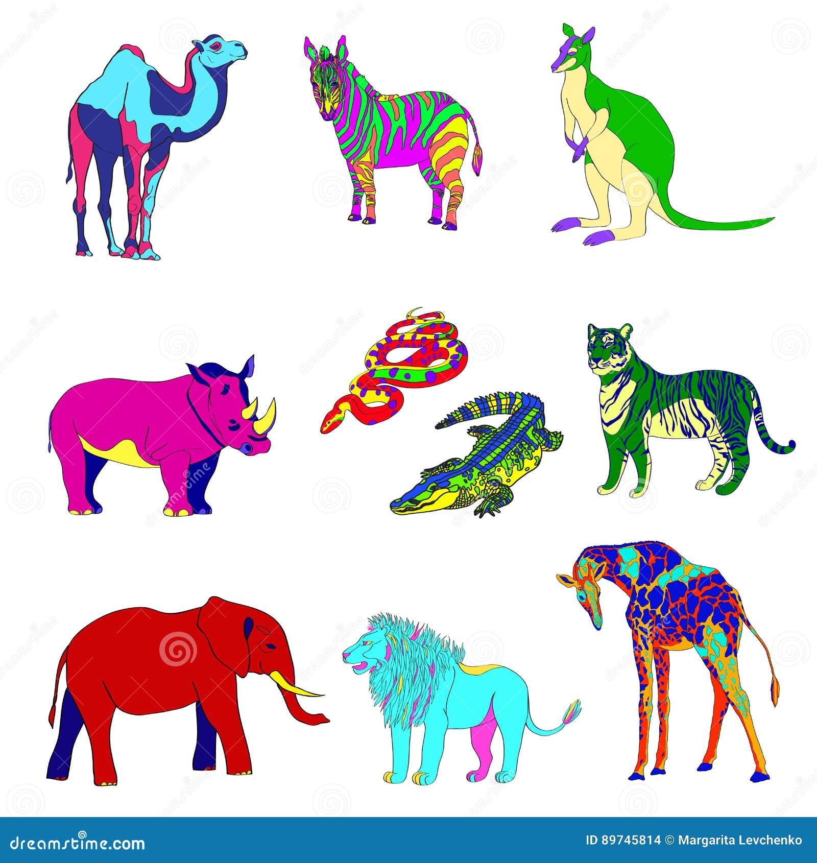 Vektorillustration, bilden av djur, djur Mångfärgade konturer Elefant känguru, kamel, lejon, sebra, noshörning,