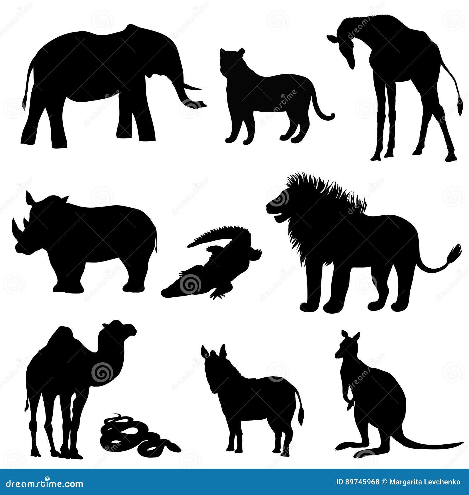 Vektorillustration, bilden av djur, djur svart silhouette Elefant känguru, kamel, lejon, sebra, noshörning, giraff,