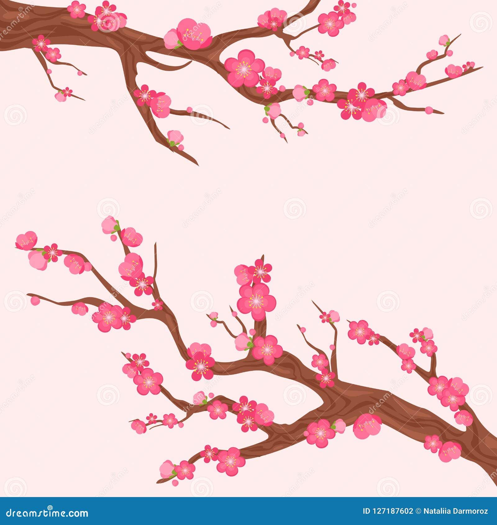 Vektorillustrationen av Japan den körsbärsröda filialen med att blomma blommar Sakura förgrena sig med lotten av härliga blommor