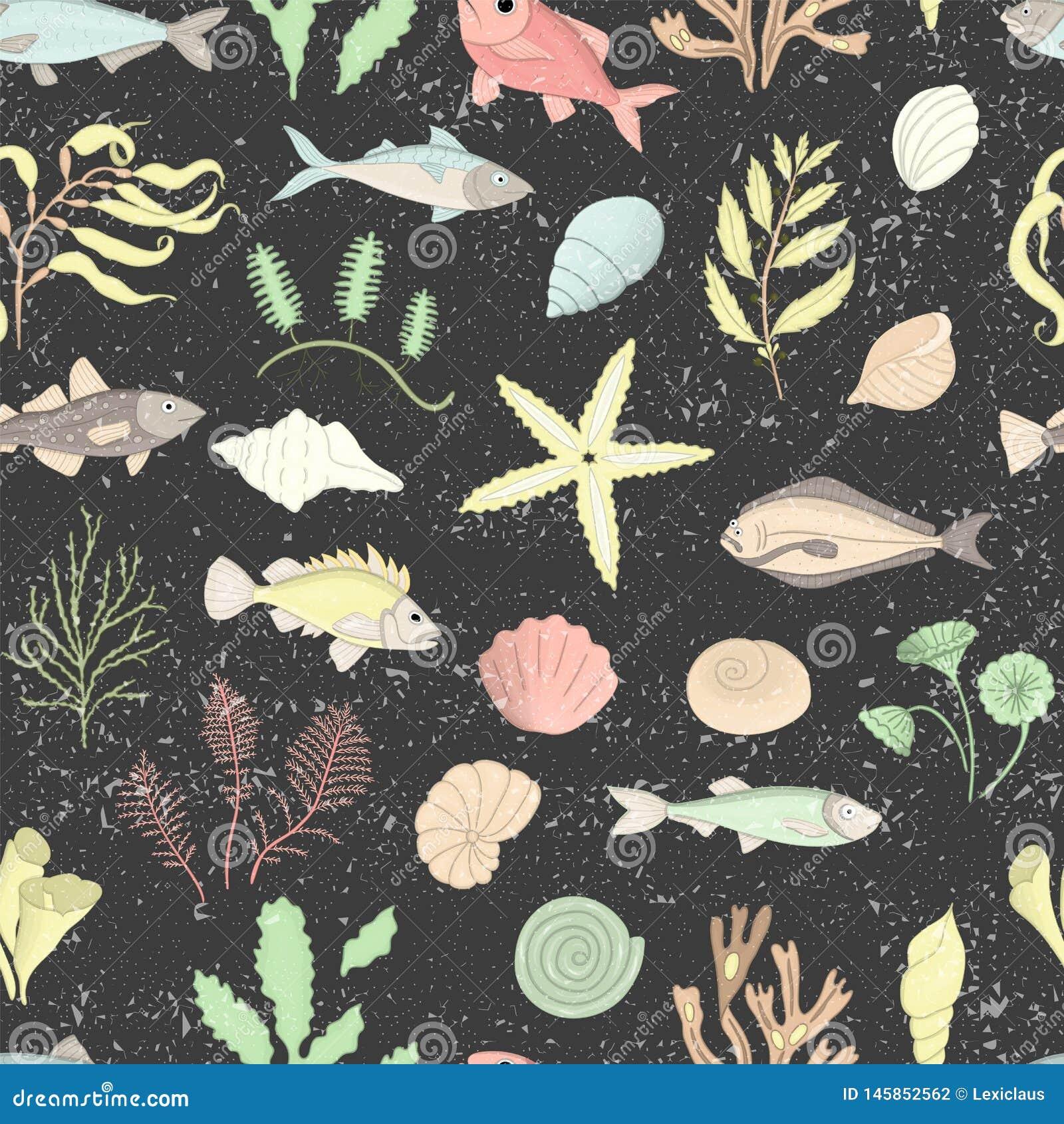 Vektorn färgade den sömlösa modellen av havsskal, fisken, havsväxter som isolerades på svart texturerad bakgrund