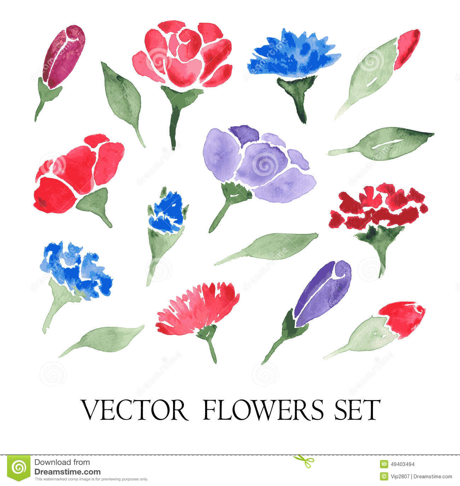 Download Vektorsatz Aquarellblumen vektor abbildung. Illustration von stieg - 49403494