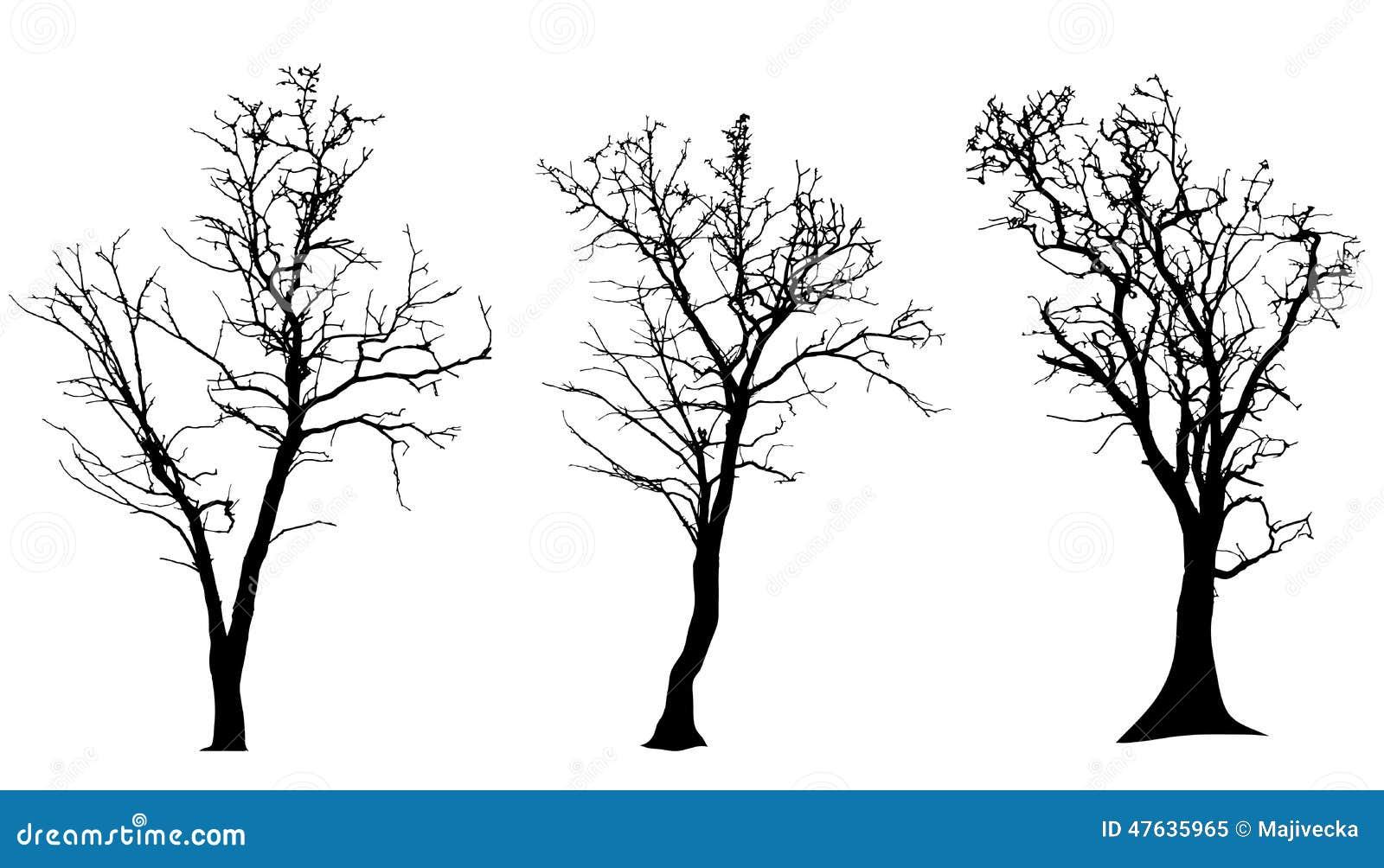 Vektorschattenbild des Baums