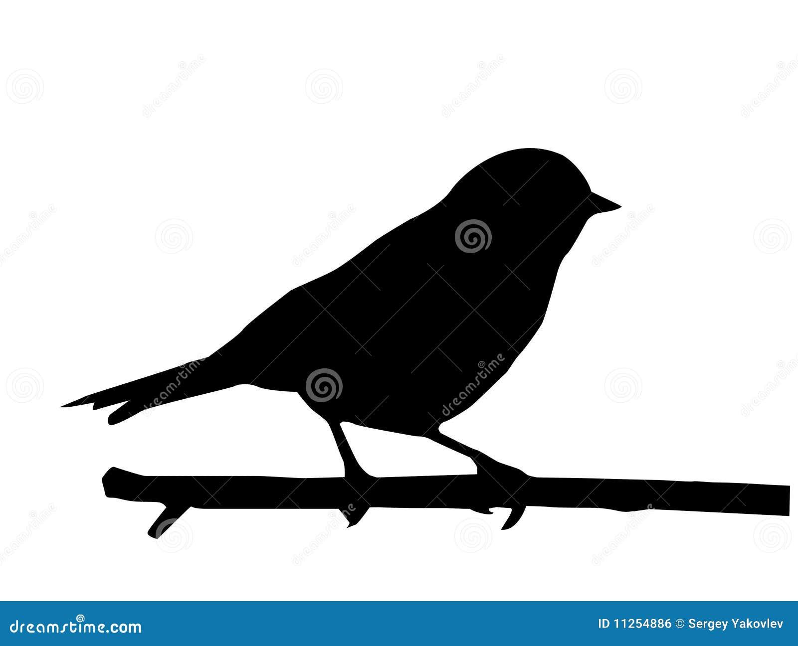 Vektorschattenbild des Vogels