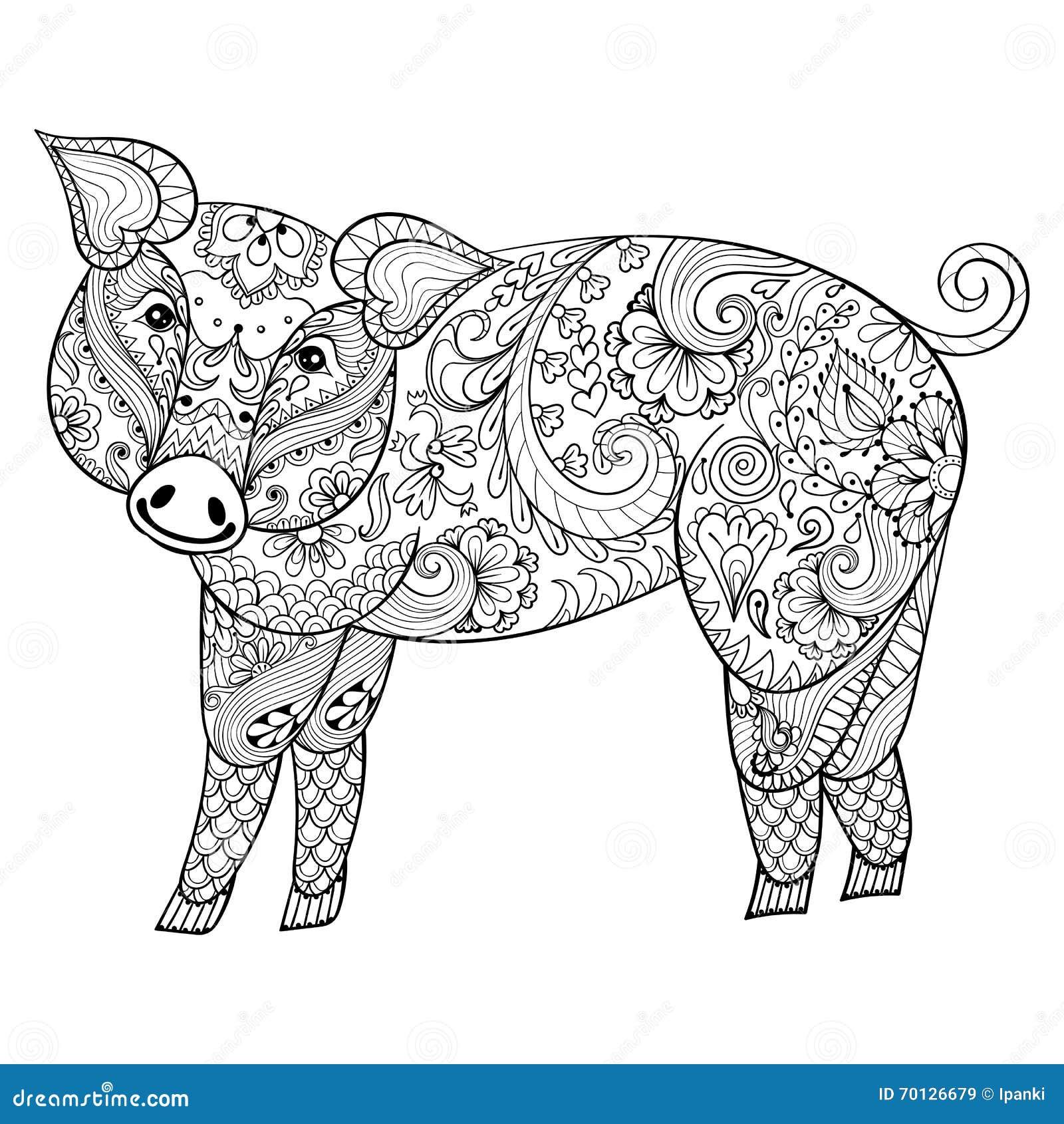 Vektorschwein Zentangle Schweinillustration Schwein