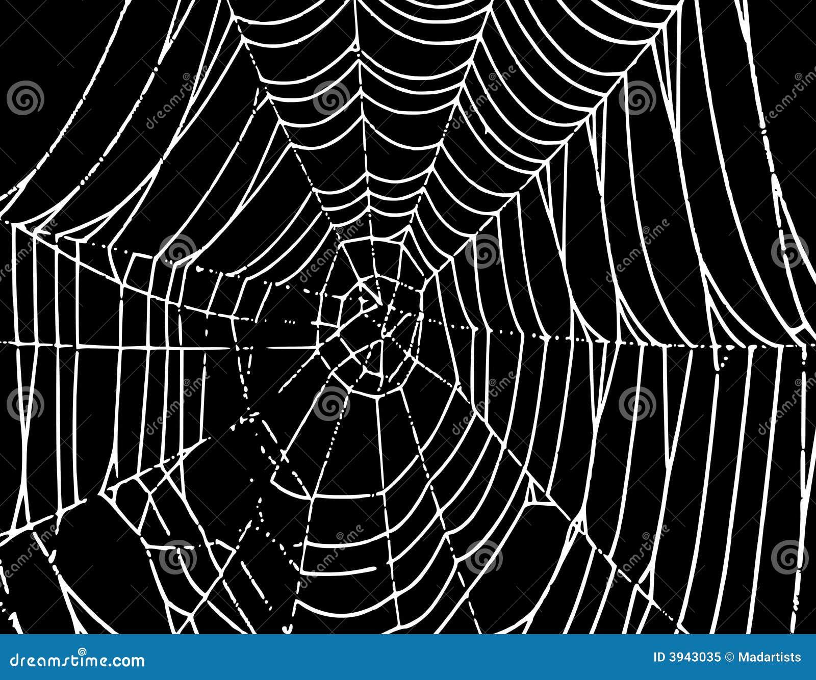 Vektorspinnen-Web-Hintergrund T