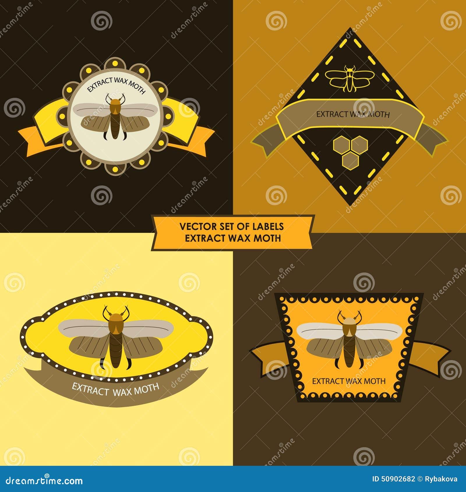 Vektoruppsättning av malen för etikettextraktvax