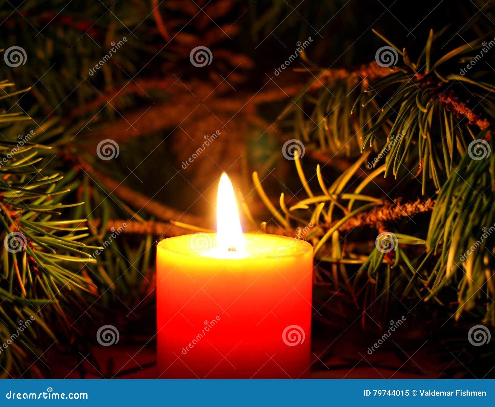 Vela de la Navidad con brunch del árbol del ` s del Año Nuevo en fondo oscuro
