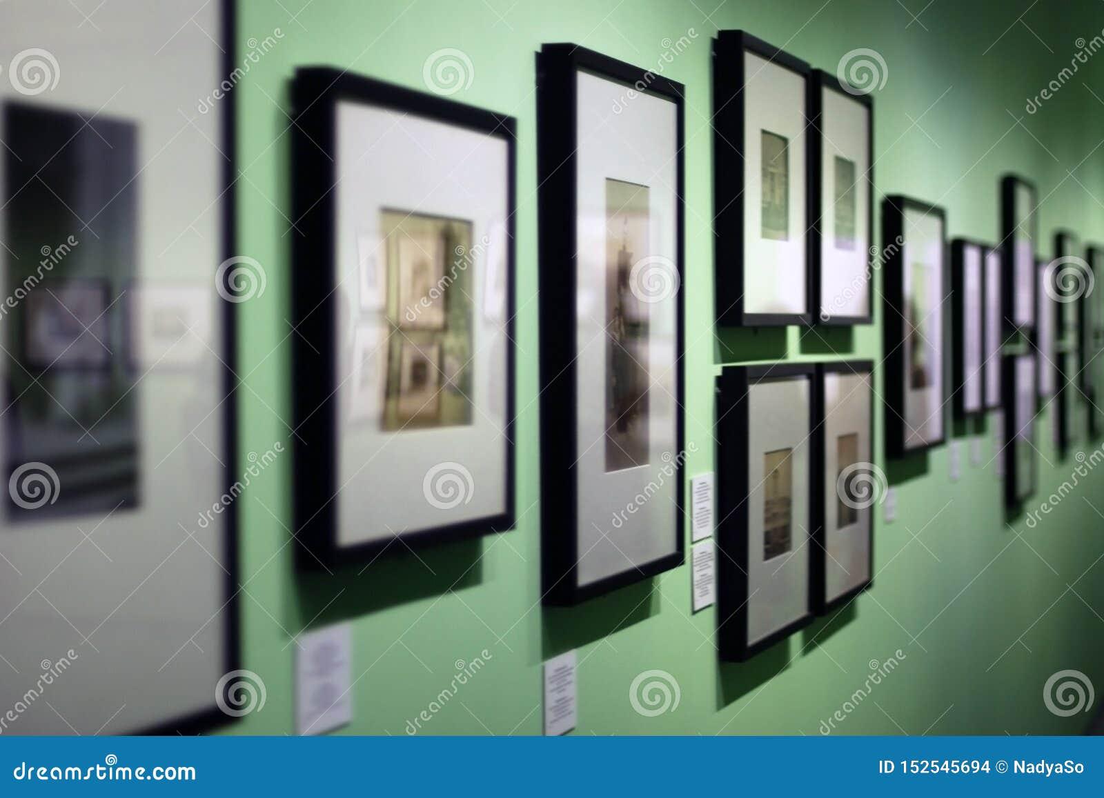 Vele fotokaders met uitstekende foto s die op groene muur in kunstgalerie hangen