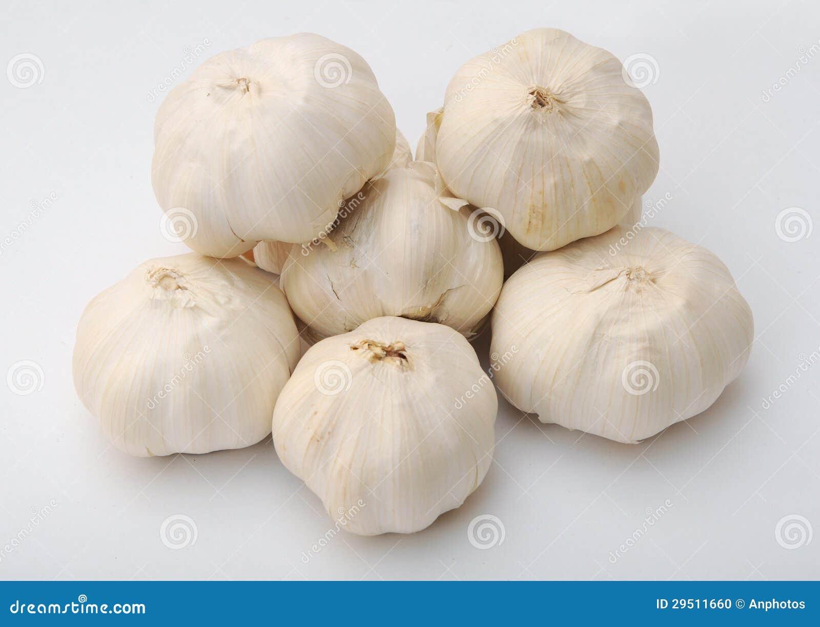 Vele garlics
