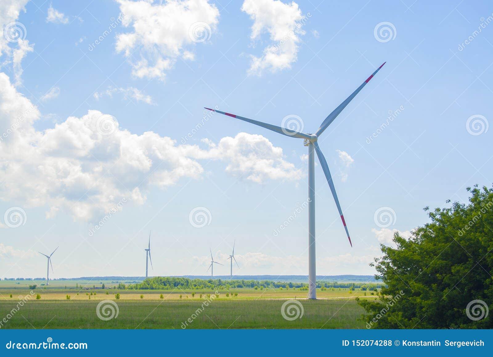 Vele grote en hoge windmolens bij zonnige dag op het groene gebied Alternatieve energiegenerators Windmolens bij zonsopgang Ecolo