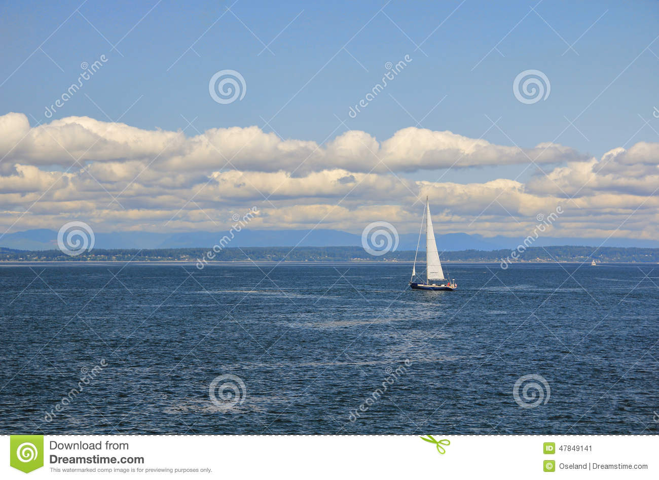 Velero en Elliott Bay, Seattle, Washington